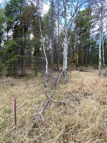 Lot 7X TBD Wallace Avenue, Conifer, CO 80433 (#5584886) :: The Gilbert Group
