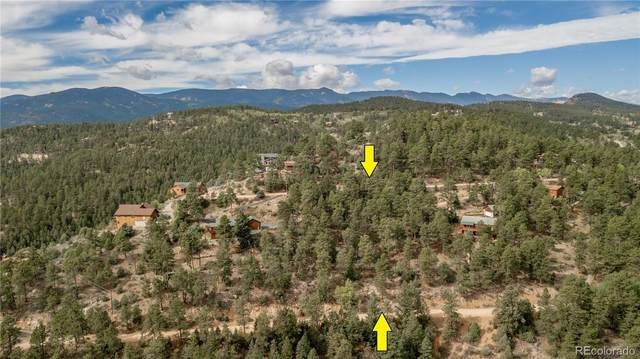 120 Turkey Lane, Bailey, CO 80421 (#5588841) :: iHomes Colorado