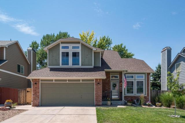 51 N Carlton Street, Castle Rock, CO 80104 (#5619768) :: The Peak Properties Group