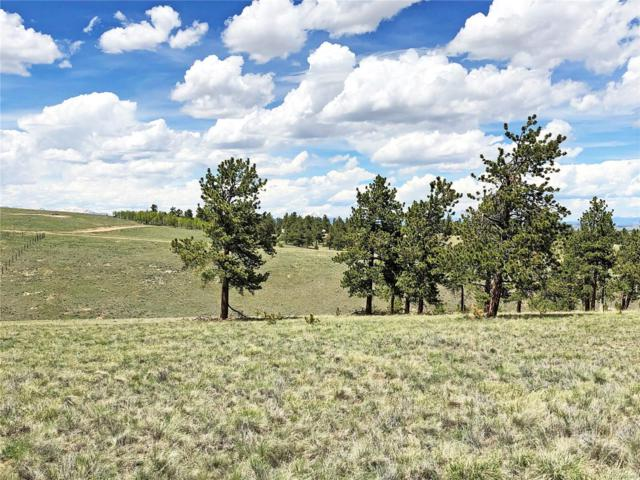 10617 Ranch Road, Hartsel, CO 80449 (#5625788) :: Bring Home Denver with Keller Williams Downtown Realty LLC