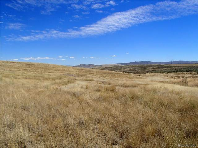 000 County Road 30, Craig, CO 81625 (MLS #5626306) :: Bliss Realty Group