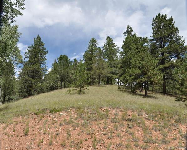 54 Eagle Drive, Divide, CO 80814 (#5628619) :: The DeGrood Team