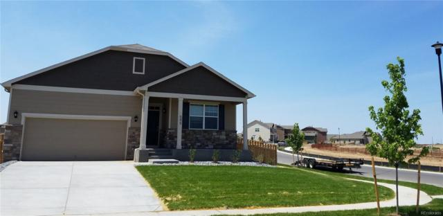 595 Gallo Street, Lochbuie, CO 80603 (#5635073) :: Bring Home Denver