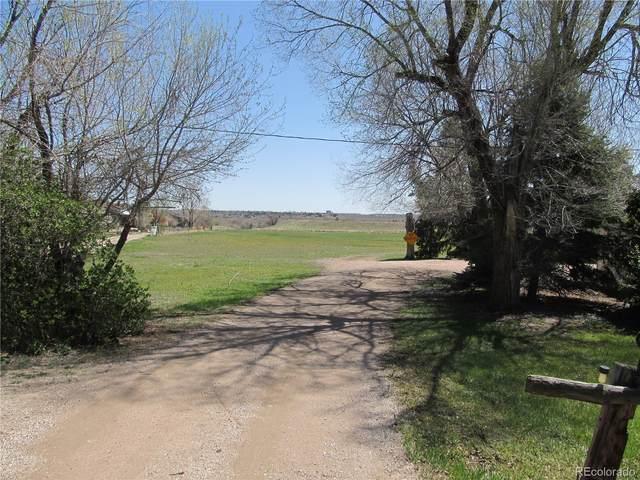 7860 S Platte Canyon Road, Littleton, CO 80128 (#5650644) :: Wisdom Real Estate