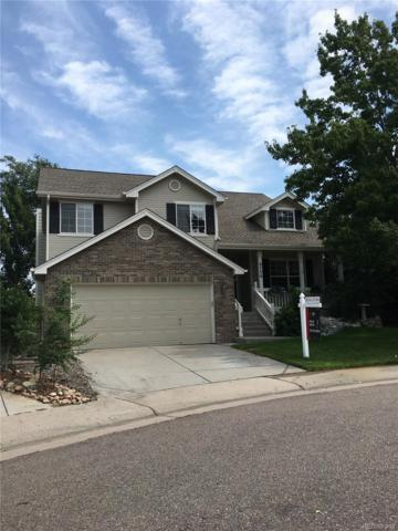 9756 Bucknell Court, Highlands Ranch, CO 80129 (#5668944) :: Bicker Realty