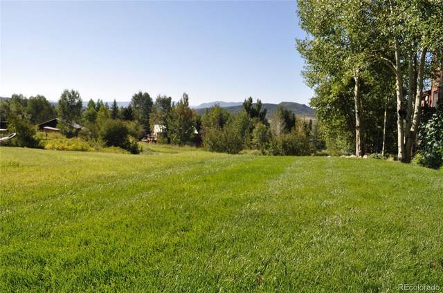 1228 / 1230 Harwig Circle, Steamboat Springs, CO 80487 (#5671423) :: Real Estate Professionals