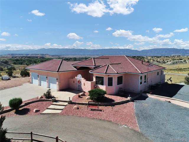 13120 State Highway 115, Penrose, CO 81240 (#5674078) :: The DeGrood Team
