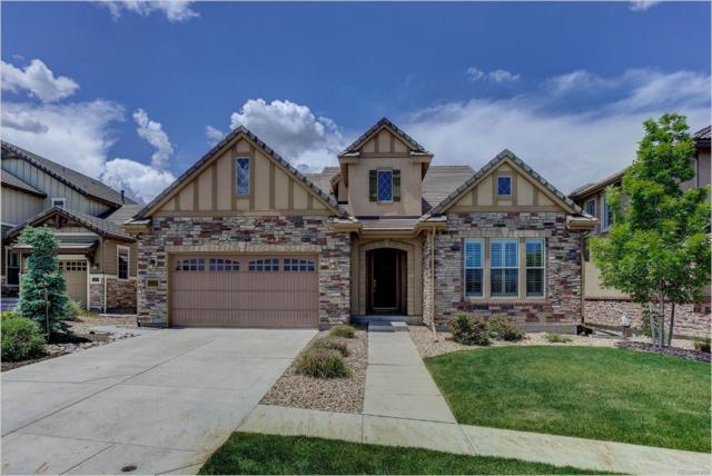 10599 Sundial Rim Road, Highlands Ranch, CO 80126 (#5687187) :: The HomeSmiths Team - Keller Williams