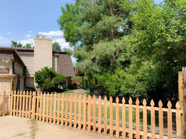 14337 W 4th Place, Golden, CO 80401 (#5706520) :: Peak Properties Group