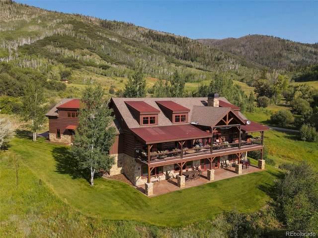 32545 Mckinnis Creek Trail, Steamboat Springs, CO 80487 (#5707408) :: Own-Sweethome Team