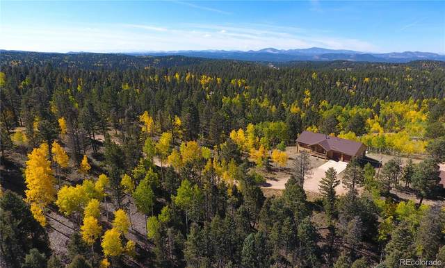 4269 County Road 51, Divide, CO 80814 (#5709988) :: The DeGrood Team