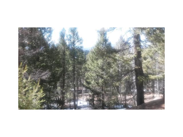 109 Ute Creek Drive, Florissant, CO 80816 (MLS #5743225) :: 8z Real Estate