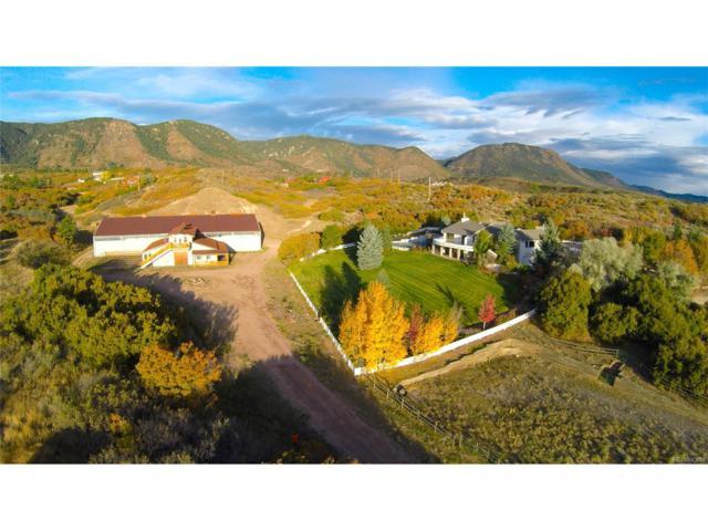 2855 Haycreek Road, Colorado Springs, CO 80921 (#5760300) :: Wisdom Real Estate