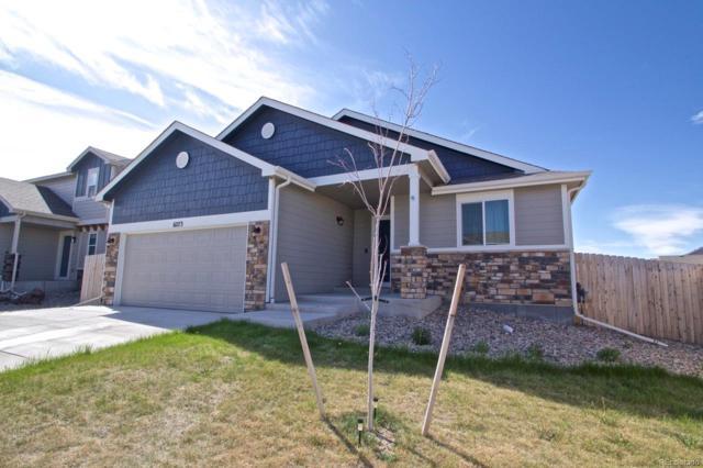 6273 Decker Drive, Colorado Springs, CO 80925 (#5773455) :: Venterra Real Estate LLC
