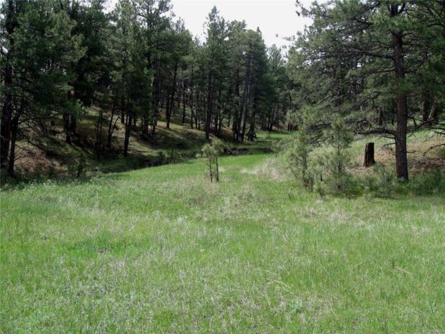 23578 E Lost Creek Trail, Agate, CO 80101 (#5776584) :: The DeGrood Team