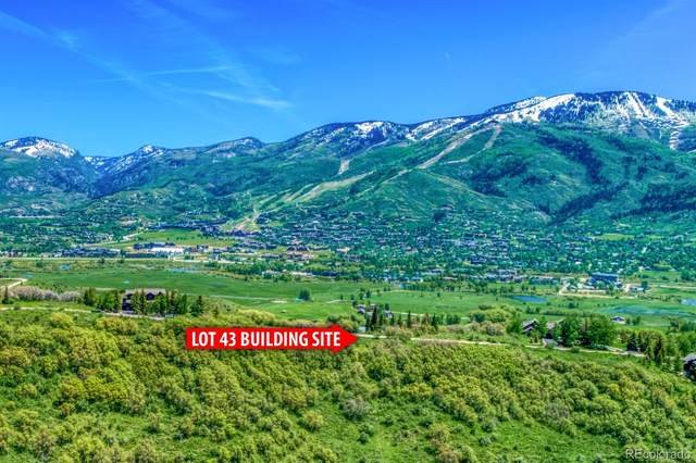 31600 Aspen Ridge Road, Steamboat Springs, CO 80487 (#5777517) :: Real Estate Professionals