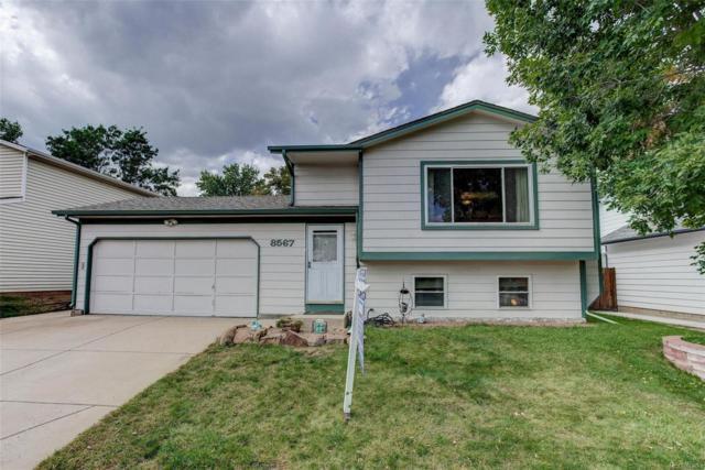 8567 W Toller Avenue, Littleton, CO 80128 (#5787339) :: The Peak Properties Group
