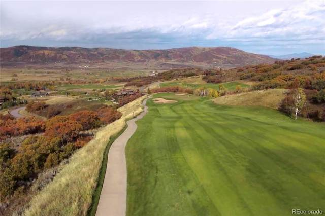 33905 Catamount Drive, Steamboat Springs, CO 80487 (MLS #5789580) :: 8z Real Estate