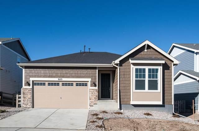 9123 Fraser River Street, Littleton, CO 80125 (#5792566) :: iHomes Colorado