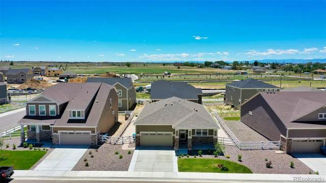 852 Penstemon Drive, Brighton, CO 80640 (#5797535) :: Realty ONE Group Five Star
