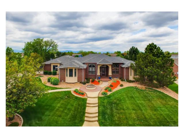 13 Blue Heron Drive, Thornton, CO 80241 (MLS #5814451) :: 8z Real Estate