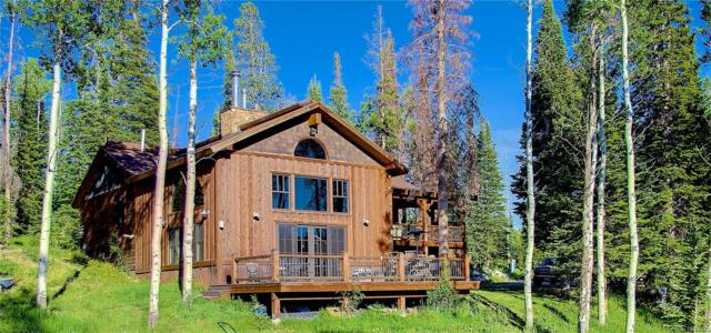 26635 Katy Court, Clark, CO 80428 (#5823406) :: Wisdom Real Estate