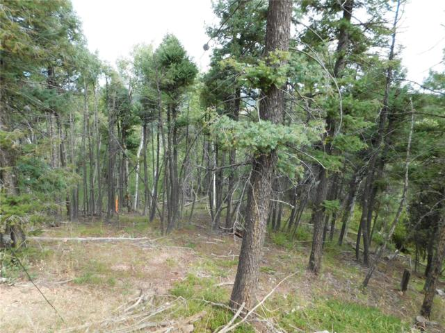 13670 Spruce Creek Circle, Larkspur, CO 80118 (#5829109) :: Wisdom Real Estate