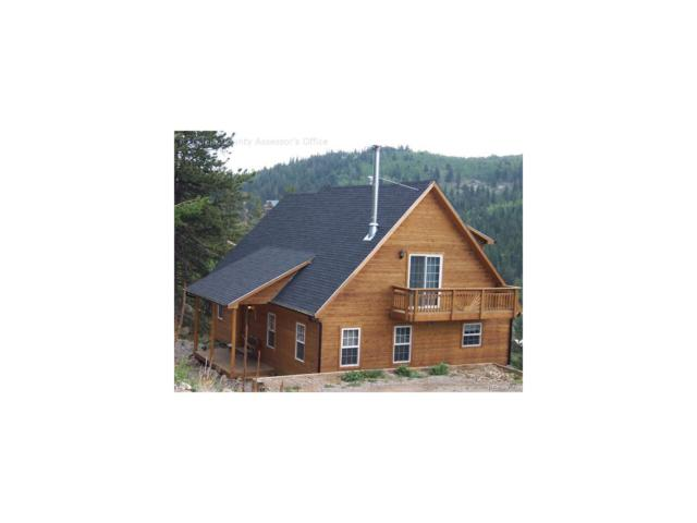 2237 Coyote Circle, Black Hawk, CO 80422 (MLS #5843589) :: 8z Real Estate