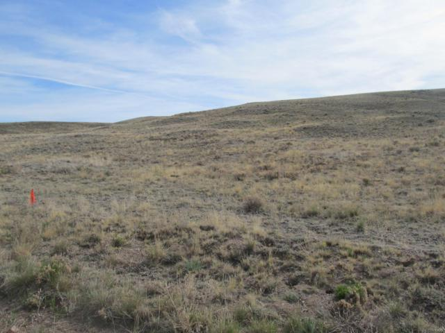 190 Wagon Wheel Road, Hartsel, CO 80449 (#5858853) :: Relevate | Denver