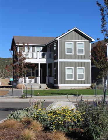 116 Split Rail Lane, Buena Vista, CO 81211 (MLS #5864705) :: 8z Real Estate