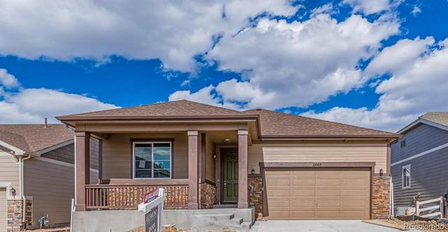 2665 Echo Park Drive, Castle Rock, CO 80104 (MLS #5882262) :: 8z Real Estate