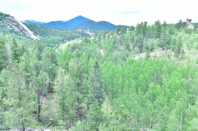 141 Buckhorn Road, Cripple Creek, CO 80813 (MLS #5899959) :: 8z Real Estate