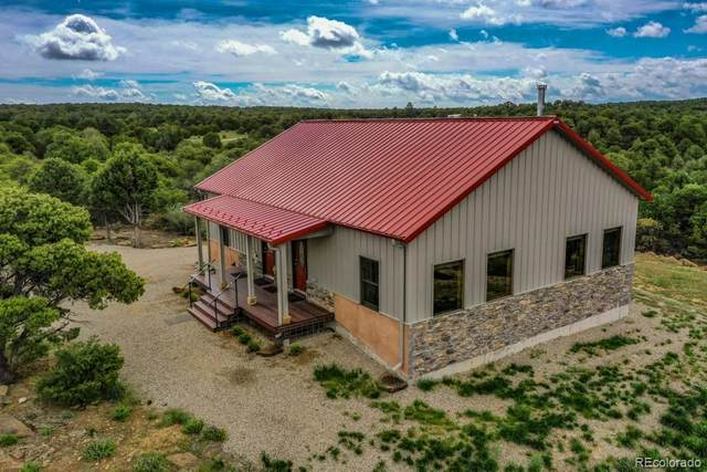 123 Rope Court, Walsenburg, CO 81089 (#5905818) :: The Griffith Home Team