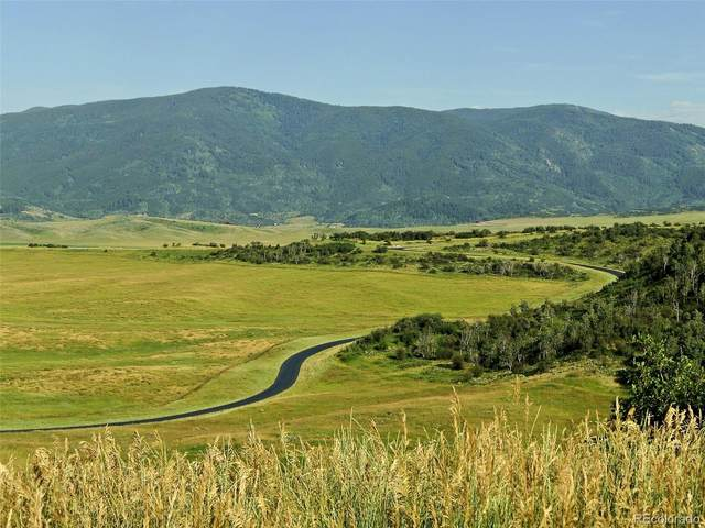 30715 Marshall Ridge Road, Steamboat Springs, CO 80487 (#5911104) :: The DeGrood Team