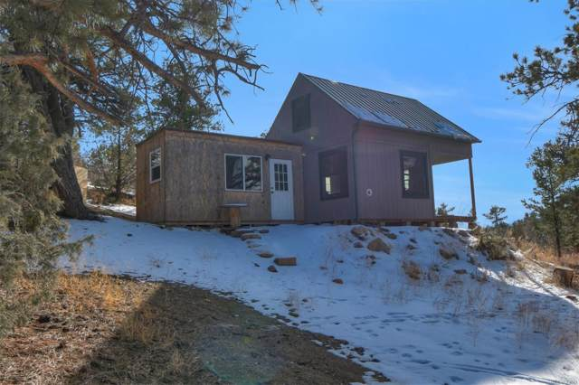 248 Mac Donnell Drive, Cotopaxi, CO 81223 (#5916128) :: The Dixon Group