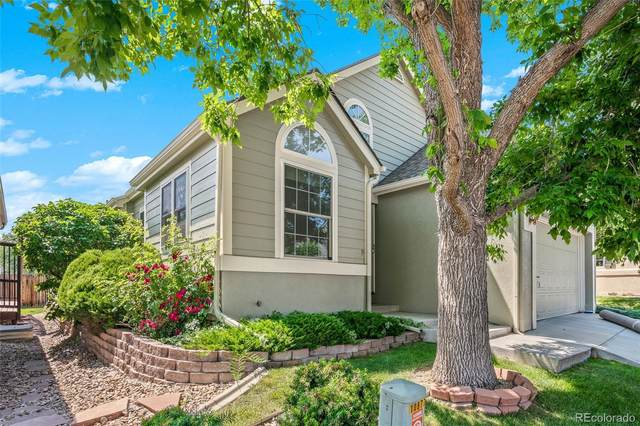 10877 W Dumbarton Drive, Littleton, CO 80127 (#5941666) :: Mile High Luxury Real Estate