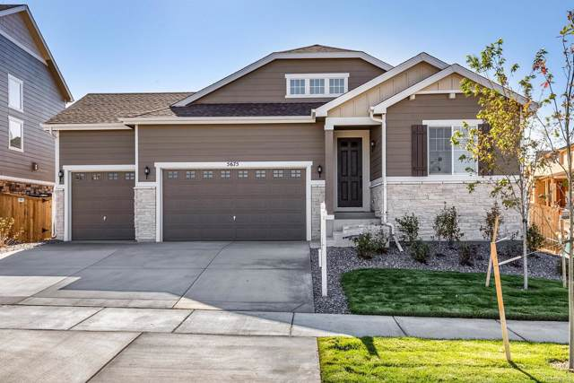 5675 S Grand Baker Court, Aurora, CO 80016 (#5961949) :: The Griffith Home Team