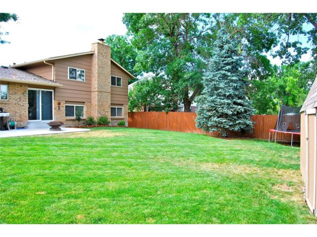 4382 S Dover Court, Littleton, CO 80123 (MLS #5972103) :: 8z Real Estate