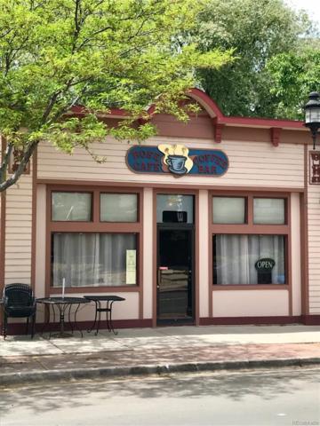 554 Briggs Street, Erie, CO 80516 (#5979278) :: The Tamborra Team