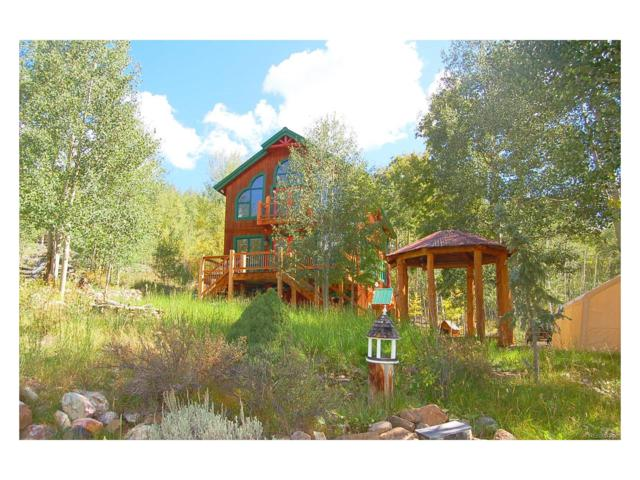 1165 Empire Valley Drive, Leadville, CO 80461 (#5982045) :: The DeGrood Team