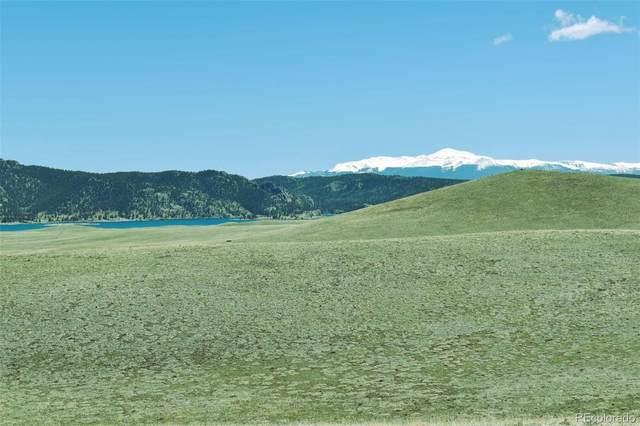 Lot 16 Canyon Ranch Road, Hartsel, CO 80449 (#6022168) :: Wisdom Real Estate