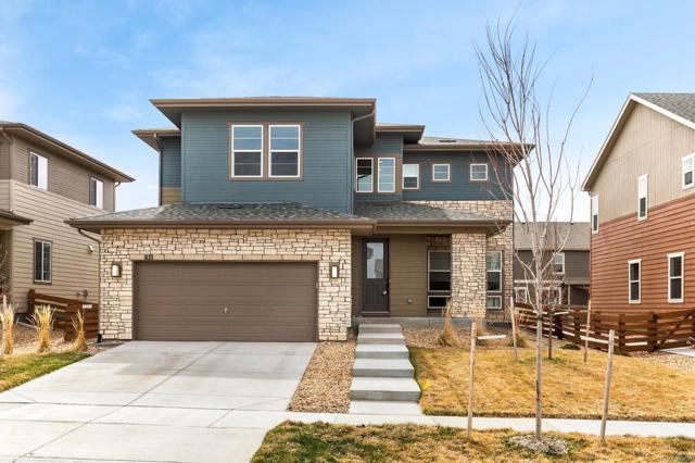 410 Pleades Place, Erie, CO 80516 (#6039922) :: Wisdom Real Estate