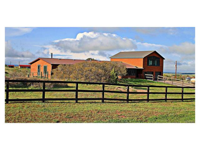 594 Arrowhead Drive, La Veta, CO 81055 (MLS #6052139) :: 8z Real Estate