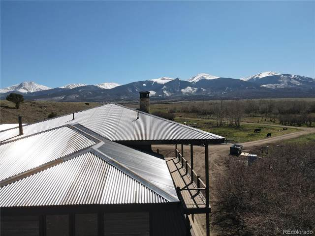 201 Branding Iron Trail, Cotopaxi, CO 81223 (#6069655) :: Stephanie Fryncko | Keller Williams Integrity