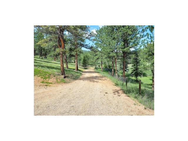 744 County Road 1034, Bailey, CO 80421 (MLS #6120310) :: 8z Real Estate