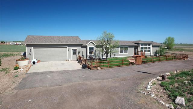 67671 E 48th Avenue, Byers, CO 80103 (#6136145) :: Sellstate Realty Pros