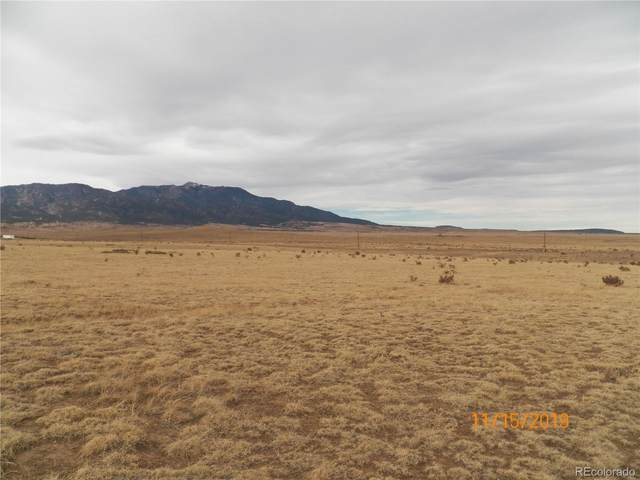 Colorado Buffalo Ranch, Walsenburg, CO 81089 (#6159278) :: The Scott Futa Home Team