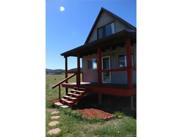 2149 County Road 341, Westcliffe, CO 81252 (MLS #6161291) :: 8z Real Estate