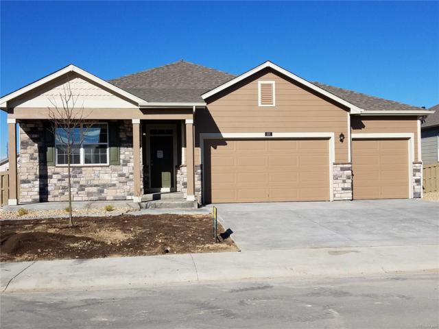531 2nd Street, Severance, CO 80550 (#6165416) :: Wisdom Real Estate