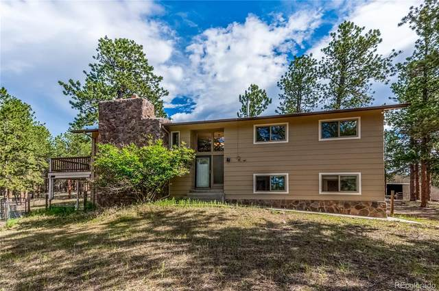 13249 Taza Lane, Pine, CO 80470 (#6180103) :: The DeGrood Team